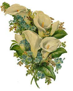 Glanzbilder - Victorian Die Cut - Victorian Scrap - Tube Victorienne - Glansbilleder - Plaatjes : Blumenstrauß