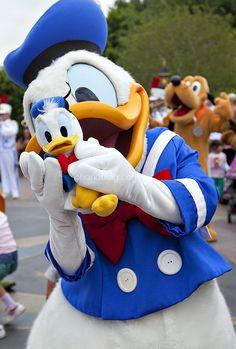 Disneyland // Donald Duck