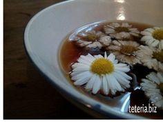 ceremonia del té con crisantemo, té puerh con flor crisantemo tea ceremony of chinese puerh tea with crysanthem flowers