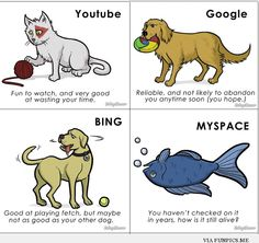 Funny Internet Infographic