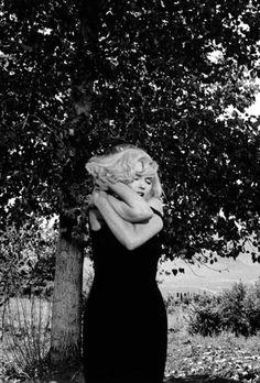 Quanto Mais Quente Melhor Desajustados Marilyn Monroe Diana Atrizes Mulher Perfeita