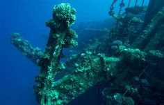 Whether purposefully sunk for scuba diving exploits or the devastating result of freak weather conditions, we've taken a look at some of the world's most spectacular shipwrecks, as well as how you can visit them. Ghost Ship, Europe Photos, Red Sea, Shipwreck, Scuba Diving, World, Diving, The World