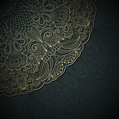 Lace decorative pattern vector background 02