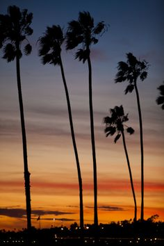 California Sunset. Santa Barbara *Dream*