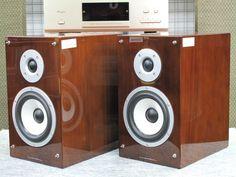 Luxman S-N100