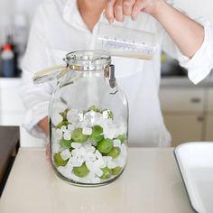 【自家製シロップレシピ】じつは簡単!氷砂糖だけで作るよりも美味しい、ウメシロップの作り方。