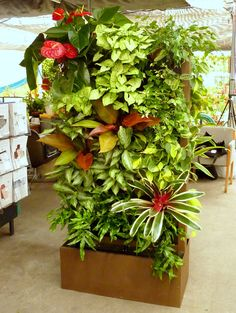 10 best plants for vertical gardens Each and every aspect that goes into building a beautiful garden needs to be just perfect for the result you want, especially the vertical gardening plants.And of course, the correct selection of plants plays a major role in achieving this feat for a vertical garden planter.