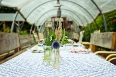hoop house set with long dining table, mismatched chairs (add loveseats or benches), glows at night...