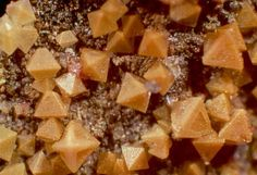 Brownish yellow octahedrons of arsenolite on matrix. White Caps Mine, Manhattan, Nye Co. NV. An arsenic mineral
