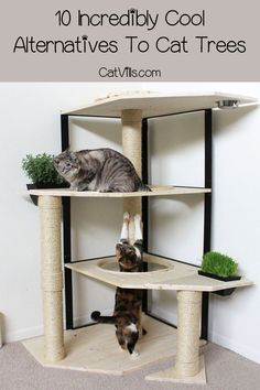 10 Incredibly Cool Alternatives to Cat Trees - CatVills - Dont love the look of store-bought cat condos? Check out five incredibly cool alternatives to cat trees that your kitty will love! Diy Cat Tower, Cat House Diy, Cat Hacks, Cat Diys, Cat Towers, Cat Playground, Cat Condo, Cat Tree Condo, Cat Room