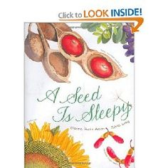 """A Seed is Sleepy"" by Dianna Hutts Aston. Award-winning artist Sylvia Long and author Dianna Hutts Aston have teamed up again to create this gorgeous and informative introduction to seeds. Poetic in voice and elegant in design, the book introduces children to a fascinating array of seed and plant facts, making it a guide that is equally at home being read on a parent's lap as in a classroom reading circle."