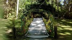 fiji honeymoon 11 Entertaining Things To Do in Fiji Islands - Meloaku Holiday Destinations, Travel Destinations, Fiji Honeymoon, Visit Fiji, Fiji Islands, Enjoy Your Vacation, Hindu Temple, Forest Park, Marine Life