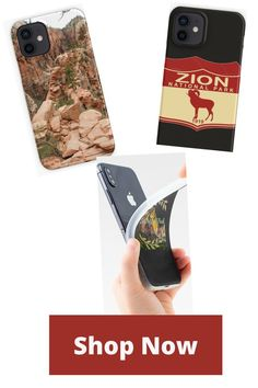 Zion National Park Vintage Sunset Travel iPhone Case & Cover