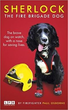 Sherlock: The Fire Brigade Dog: Amazon.co.uk: Paul Osborne: 9781780898933: Books