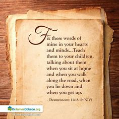A reminder to walk through the Bible with your children.