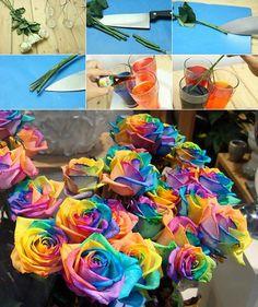 DIY Real Rainbow Roses | iCreativeIdeas.com Follow Us on Facebook --> https://www.facebook.com/iCreativeIdeas