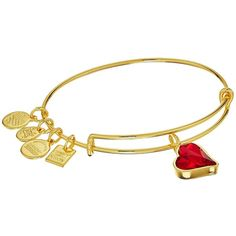 Alex and Ani Charity By Design Heart Of Strength Bangle - (Product)Red... ($38) ❤ liked on Polyvore featuring jewelry, bracelets, adjustable bangle bracelet, bangle charm bracelet, heart jewelry, adjustable bangle and hinged bangle