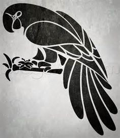 macaw drawrings - Yahoo Image Search results