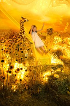 ADRIEN BROOM - The Color Project - Sliding into yellow