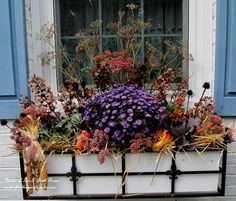 Fall window boxes: small gourds, ornamental cabbage, aster, hay, dried hydrangeas and more!