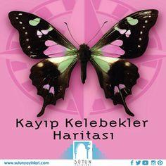 Kayıp #kelebekler #haritası #sutunyayinlari