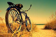 Beach Cruiser $