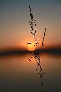 صباح الخير صباح التوكل على الله