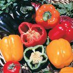 Peppers for fajitas