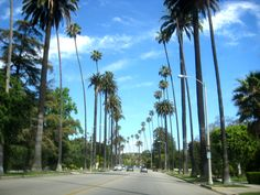 Benedict Canyon Drive, Beverly Hills