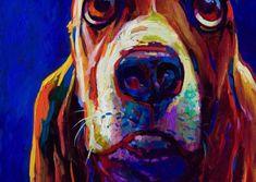 Pets Gallery | Simon Bull