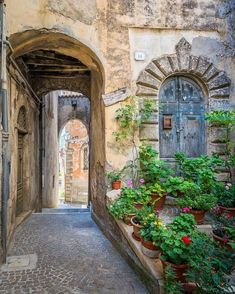 Lazio Photography Print, Fiuggi Frosinone, Italy, landscape, Italia, village, borgo, summer, flowers, vacation, holidays, travel, Latium, Rome, Roma #italylandscape