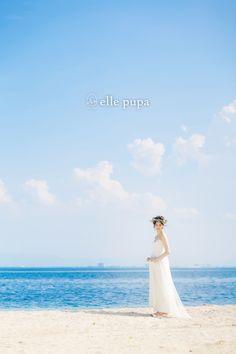 【滋賀】日吉大社と、琵琶湖とかいて「海」と呼ぶロケ の画像|*elle pupa blog*