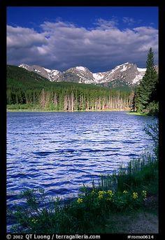 Windy morning, Sprague Lake. Rocky Mountain National Park, Colorado