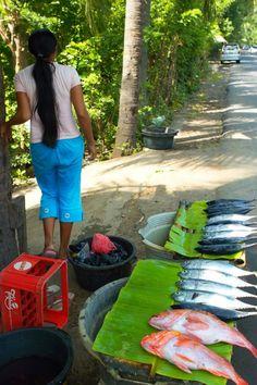 #dailylife Indonesian fish seller