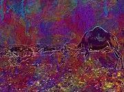 "New artwork for sale! - "" Camel Oman Arabia Asia Desert Dry  by PixBreak Art "" - http://ift.tt/2vlAt9w"