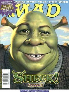 Shrek - Harry Potter - Martha Stewart - The Oc - Stupid Teachers