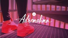 Brand Reveal // Adre