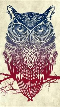Tribal owl iPhone 5 Wallpapers
