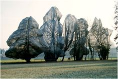 Christo & Jeanne-Claude, Trees, 1998