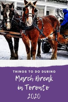 Enjoy these things to do during March Break in Toronto 2020 #thingstodo #MarchBreak #Toronto #events #2020 #March