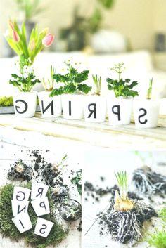 carta plantada-do-que-DIY Deco para a primavera - New Ideas Plantar, Potted Plants, Greenery, Decoupage, Lettering, Table Decorations, Spring, Home Decor, Diy