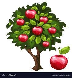 Apple tree with ripe fruits in cartoon style vector image on VectorStock Spring Arts And Crafts, Easter Arts And Crafts, House Drawing For Kids, Cartoon Trees, Beard Art, Fruit Logo, Color Pencil Art, Autumn Art, Apple Tree
