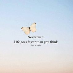 Positive Quotes : QUOTATION – Image : Quotes Of the day – Description Never wait. Life goes faster than you think. Sharing is Power – Don't forget to share this quote ! https://hallofquotes.com/2018/04/15/positive-quotes-never-wait-life-goes-faster-than-you-think/