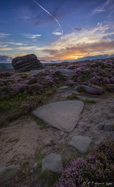 Sunset Path by Rob Harris on 500px