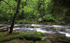 czech republic rivers | Vydra River, Sumava, Czech Republic - HD Travel photos and wallpapers