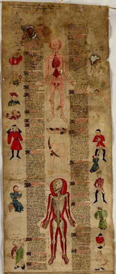 Рукопись «О физических искусствах и хирургии» 425-1435 г.