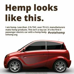 Motive Industries to roll out their 4 door electric hemp body car. Hemp & autos is a smart pair. Cannabis, Medical Marijuana, Eco Friendly Cars, Endocannabinoid System, Hemp Oil, Climate Change, Sustainability, The Cure, Industrial