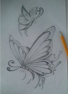 Drawings - animals, butterfly