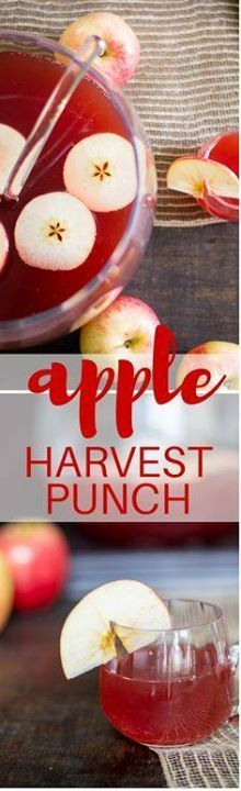 Apple Harvest Punch Apple Harvest Punch - perfect for fall and...  Apple Harvest Punch Apple Harvest Punch - perfect for fall and holiday entertaining! Recipe : http://ift.tt/1hGiZgA And @ItsNutella  http://ift.tt/2v8iUYW