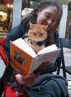 """Cat Care Health """"A Street Cat Named Bob"""" A tribute to a very special relationship. James Bowen, a recovering heroin addict, met Bob the ginger tom. Bob needed a little help w/ his health A Cat Named Bob, Bobcat Pictures, Street Cat Bob, Son Chat, Tribute, Cat Pose, Orange Tabby Cats, Ginger Cats, Cat Facts"""
